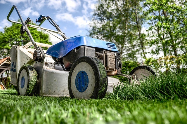 Vendee mag conseil jardinage mois de mars entretien de for Conseil plantation jardin